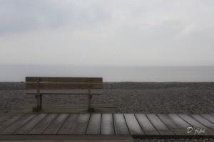 En Baie de Somme, mars 2013