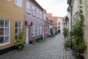 Danemark, septembre 2010
